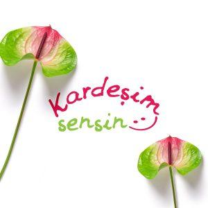 kardesimsensin_logo